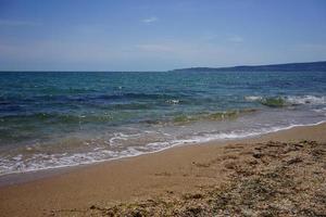 plage dorée aux algues sur la mer bleu vif photo