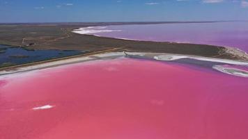 vue aérienne du lac rose avec rive salée photo