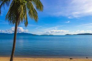 incroyable panorama de paysage de plage de palmiers de l'île de koh samui en thaïlande. photo