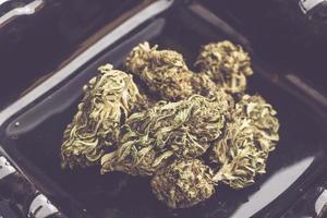 Détail d'une fleur de marijuana sur fond sombre photo