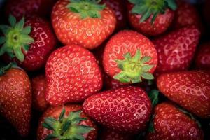 fruits fraises dans une boîte en papier photo