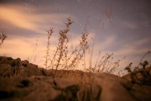 paysages étonnants du sinaï egypte photo