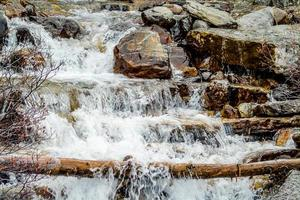 Tangle Creek tombe. Parc national Jasper, Alberta, Canada photo