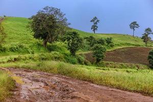 traces de pneus sur une route boueuse à la campagne photo