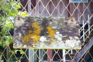 vieux bois avec de la mousse et des champignons accrochés au grillage. photo