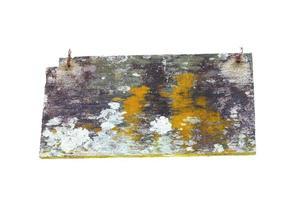 Vieux bois avec mousse et champignon isolé sur fond blanc photo