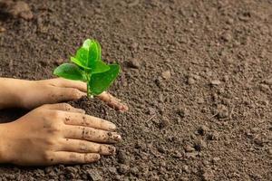 planter des semis à la main dans le concept de la journée mondiale de l'ozone au sol photo