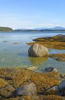 rochers côtiers à marée basse photo
