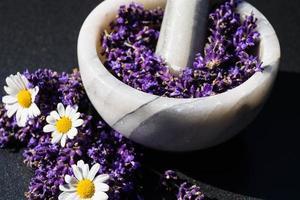 médecine alternative à la lavande fraîche photo