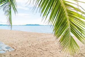 Palm et plage tropicale à Pattaya en Thaïlande photo