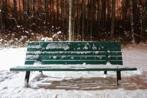 un banc en bois vert vide recouvert de neige blanche et de glace photo