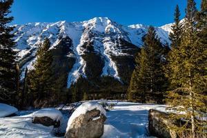 plages de kananaskis couvertes de neige. parc provincial peter lougheed photo