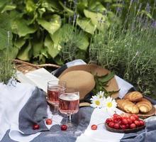 pique-nique d'été dans le champ de lavande. photo