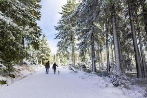 Les randonneurs dans le paysage d'hiver dans les montagnes de Brocken, Harz, Allemagne photo