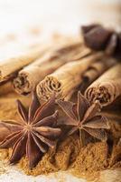 bâtons de cannelle et poudre d'anis étoilé sur l'espace de copie photo