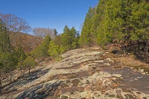 Crête de grès nu dans parmi les arbres photo