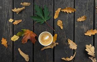 tasse de café et feuillage automne composition à plat photo