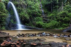 Mon tha than cascade à chiang mai, thaïlande photo