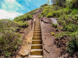 échelle d'accès au pic de tijuca pico da tijuca dans le parc national de tijuca photo