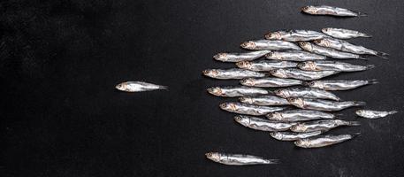 plusieurs poissons anchois salés sur une table en béton foncé photo