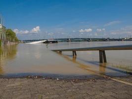 Inondation du Rhin à Mayence, Allemagne photo