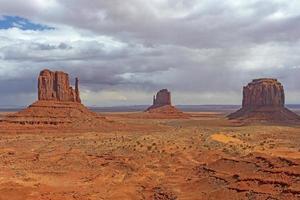 sentinelles solitaires dans le désert photo