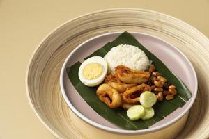 repas traditionnel nasi lemak photo