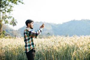 agriculteur intelligent vérifiant la ferme d'orge avec une tablette photo