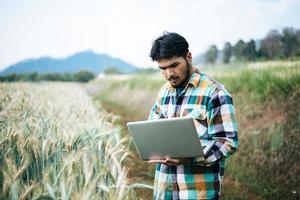agriculteur intelligent vérifiant la ferme d'orge avec un ordinateur portable photo
