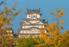 Vue du château de himeji au japon photo