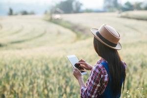 Fermière intelligente regardant un champ d'orge avec une tablette tactile photo