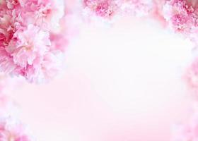 fond de cadre de belles fleurs de printemps, thème de la saison, bonjour le printemps photo