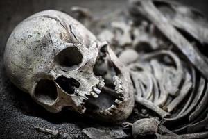 os et crâne de squelette de mort humaine photo