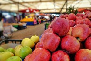 pomme rouge saine et bio photo