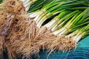 poireau de légumes verts et frais sains photo