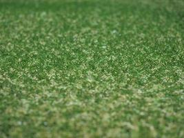fond de prairie de gazon synthétique artificiel vert photo