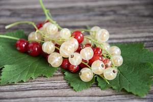 groseilles rouges et blanches avec des feuilles vertes dans un gros plan de tas photo