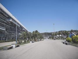 Sotchi, Russie, ruelle avec palmiers dans le parc olympique, 2019 photo