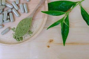 poudre de kariyat ou andrographis paniculata dans une cuillère en bois photo