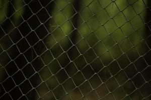 beau fond d'une clôture métallique dans le jardin photo