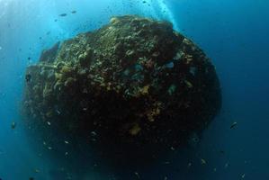 épave du navire de la liberté à tulamben photo