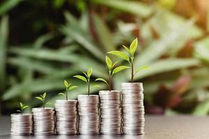 pile de pièces de monnaie avec un petit arbre au sommet disposées dans un graphique photo