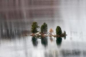 petite île avec des plantes dans un lac de montagne photo