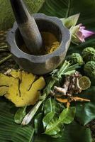 détail des produits biologiques tropicaux exotiques naturels dans un spa de beauté asiatique photo