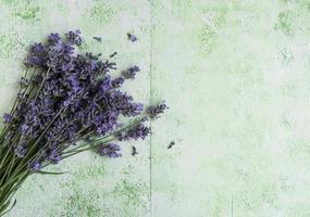 bouquet de fleurs fraîches de lavande photo