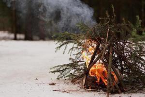 feu de joie des branches de sapin dans la forêt d'hiver photo