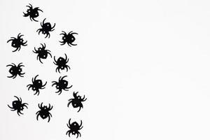 cadre d'halloween, décoration festive, araignée, fond de chauve-souris photo