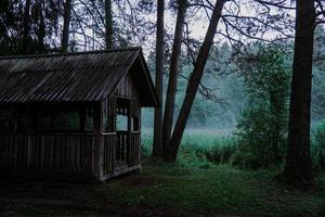 un vieux gazebo en bois dans une forêt verte. brouillard sur le marais photo