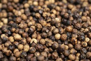 Close up of kampot poivre bio poivre séchant au soleil au cambodge photo