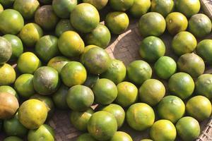 jus d'orange local au marché traditionnel photo